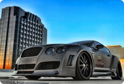 Platinum Motorsport Bentley Continental GT 05.jpg_595