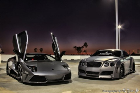 Platinum Motorsport Bentley Continental GT 09.jpg_595