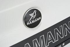 2012-Hamann-BMW-M5-F10M-exterior-rear-logo-details