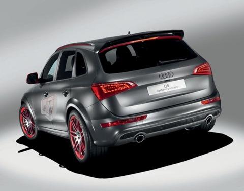 Audi-Q5-Custom-Concept-02.jpg_595