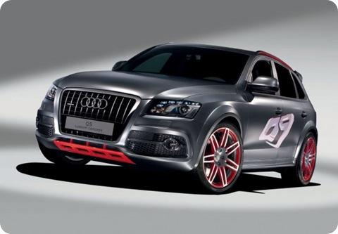 Audi-Q5-Custom-Concept-05.jpg_595