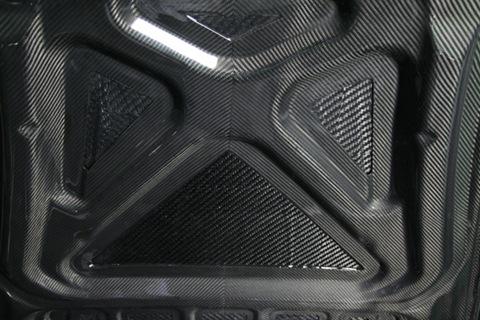 Porsche 997 Carbon Dry Japan (11)