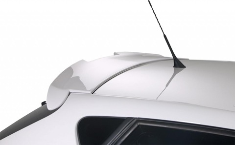 RDX Racedesign body styling for Seat Ibiza 6J 5
