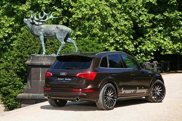 Audi Q5 by Senner Tuning 11