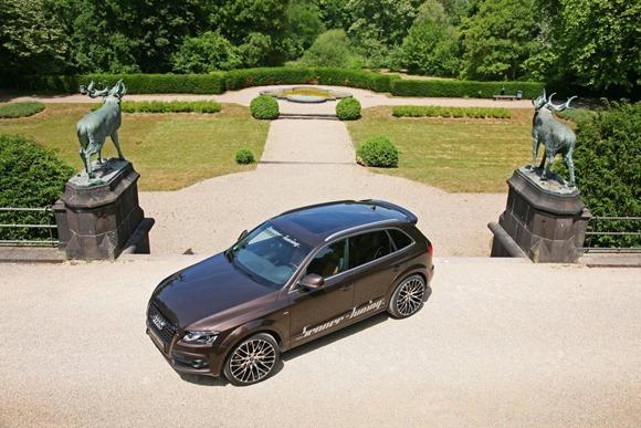Audi Q5 by Senner Tuning 5