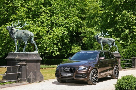 Audi Q5 by Senner Tuning 8