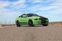shelby GT350 2013