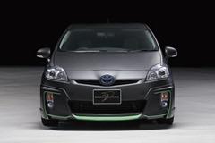 Wald-Toyota-Prius-7[2]